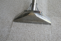 carpet cleaning Webster