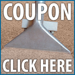 discount clean steam carpet Dayton